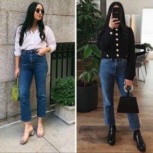 AGOLDE PINCH WAIST PLACEBO High Rise Vintage Jean